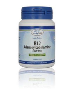 Vitakruid B12 Adenosylcobalamine 5000 mcg 60 smelttabletten