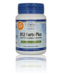 Vitakruid B12 Forte plus 3000 mcg met P-5-P 60 smelttabletten