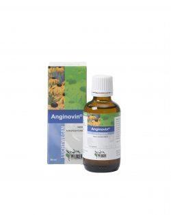 Anginovin 50 ml