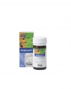 Anginovin 100 tabletten