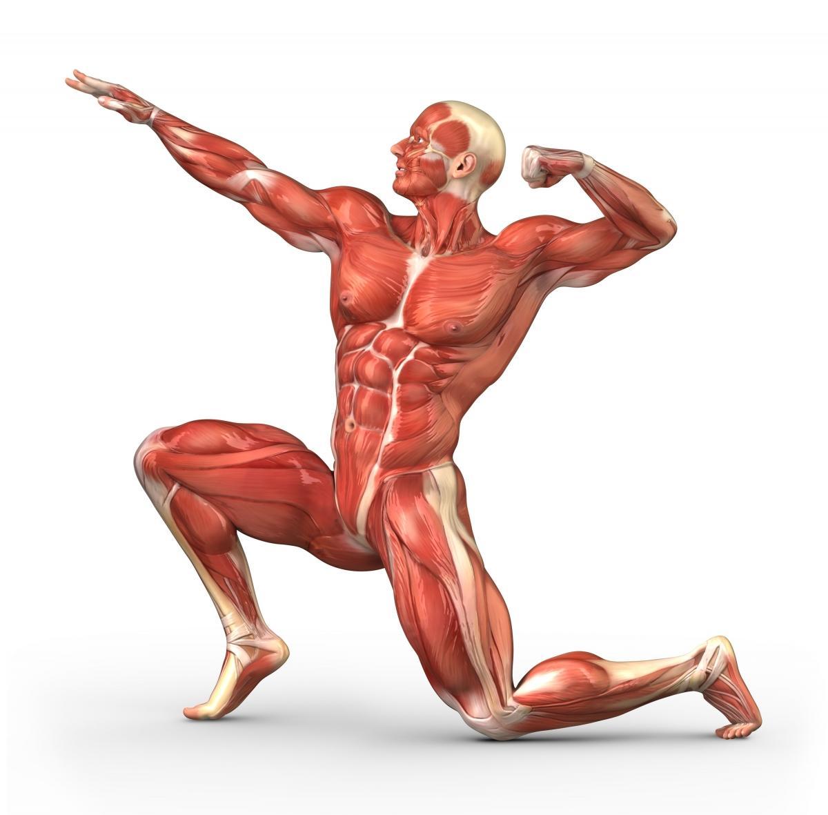 Lichamelijke ondersteuning en voetverzorging